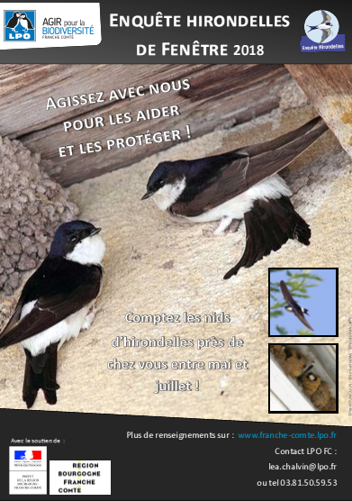 http://files.biolovision.net/franche-comte.lpo.fr/userfiles/Afficheenqutehirondelles2018.jpg