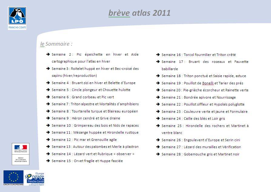 http://files.biolovision.net/franche-comte.lpo.fr/userfiles/observer/Atlas/BrevesAtlas/BreveAtlas2011image.jpg