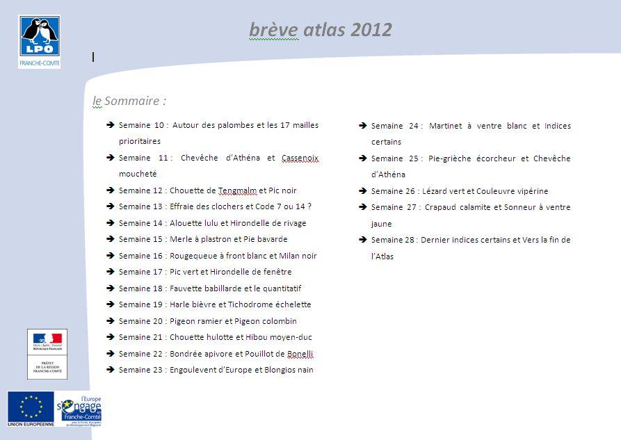 http://files.biolovision.net/franche-comte.lpo.fr/userfiles/observer/Atlas/BrevesAtlas/BreveAtlas2012image.jpg