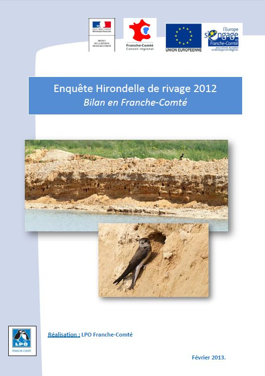 http://files.biolovision.net/franche-comte.lpo.fr/userfiles/observer/Hirondelles/PagedecouvRiparia.jpg