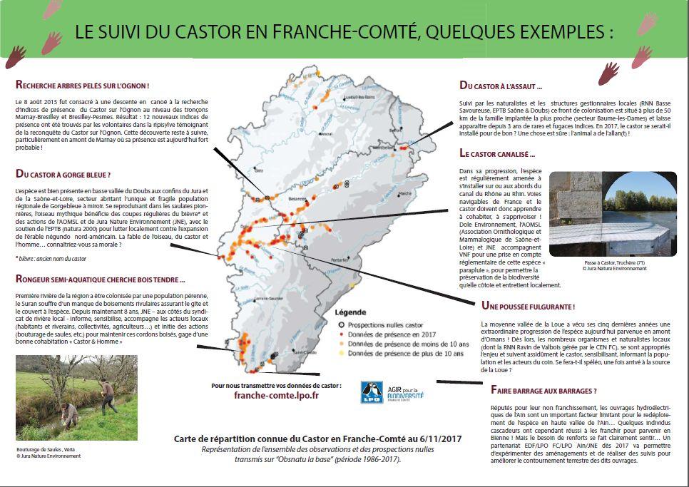 http://files.biolovision.net/franche-comte.lpo.fr/userfiles/proteger/Castor/P2feuillesaule.jpg