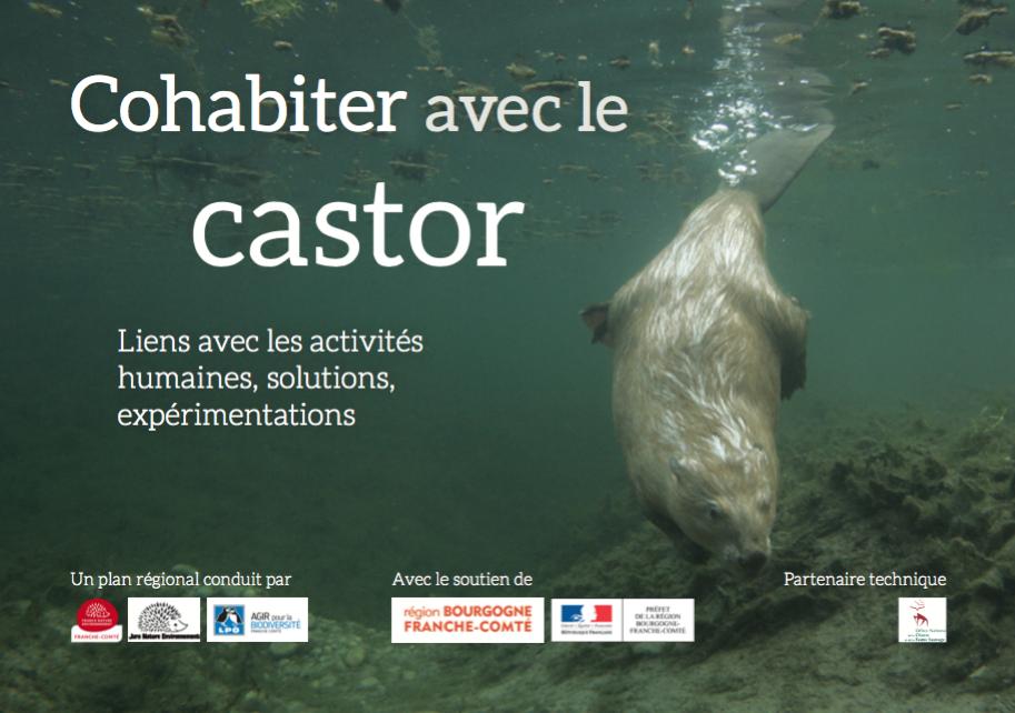 http://files.biolovision.net/franche-comte.lpo.fr/userfiles/publications/Capturedcran2016-05-1015.19.19.png