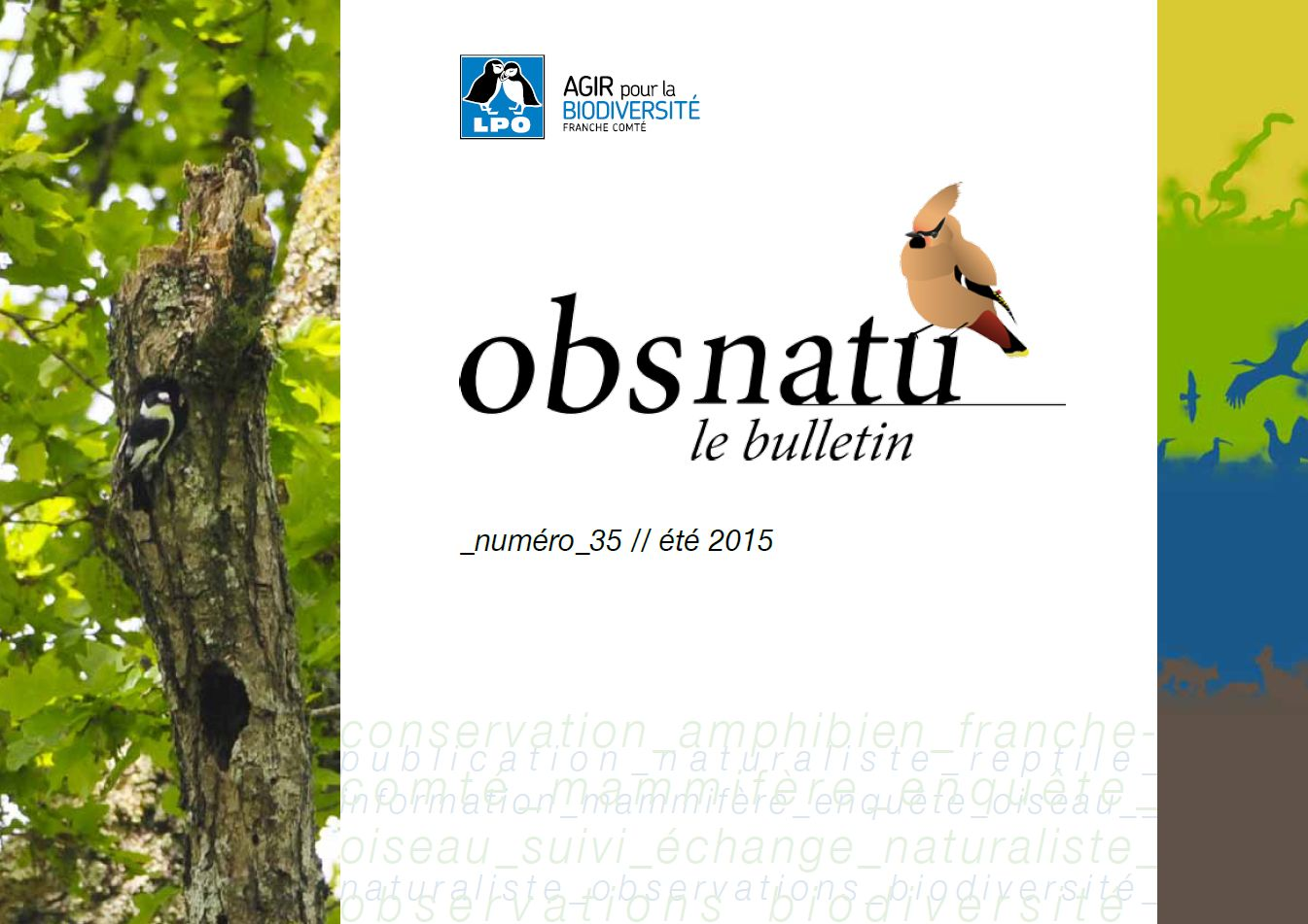 http://files.biolovision.net/franche-comte.lpo.fr/userfiles/publications/Obsnatubulls/Obsnatun35ete2015couv.jpg