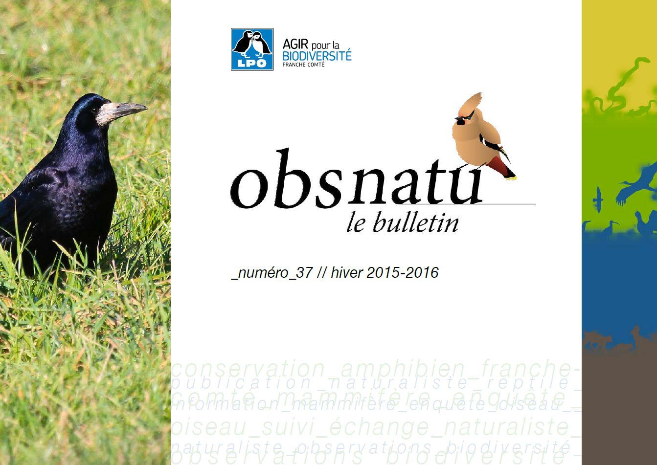 http://files.biolovision.net/franche-comte.lpo.fr/userfiles/publications/Obsnatubulls/Obsnatun37hiv2015couv.jpg
