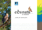 http://files.biolovision.net/franche-comte.lpo.fr/userfiles/publications/Obsnatubulls/olb24-1couv.jpg