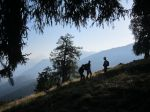 Sortie guignard � la Tour Bonvin [GdJ VS]