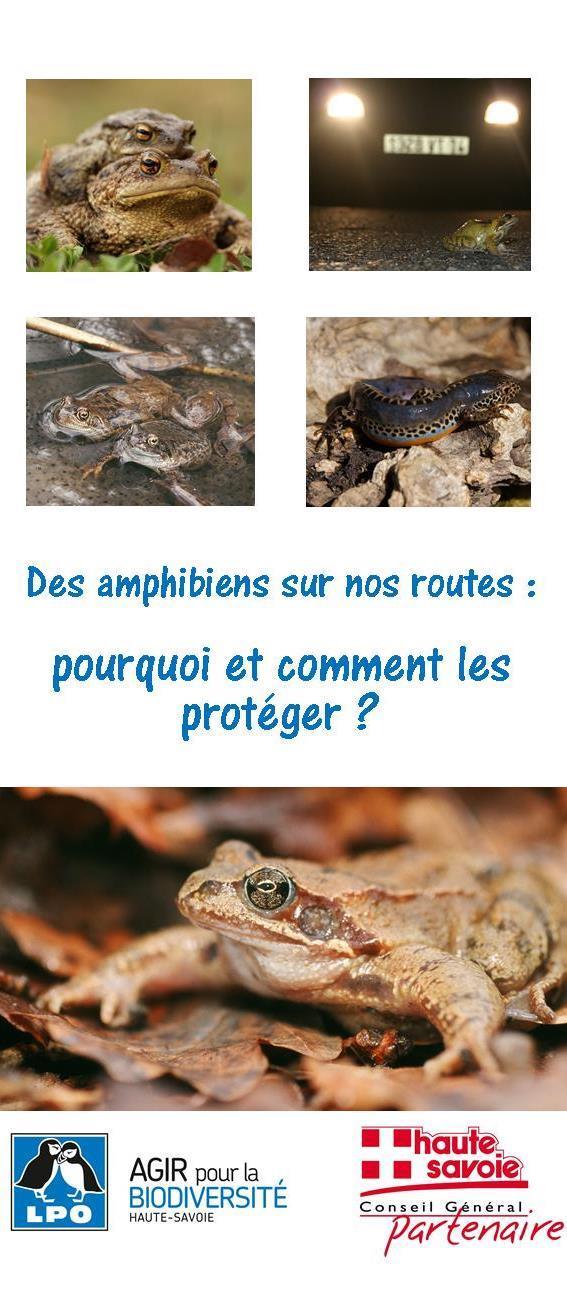 http://files.biolovision.net/haute-savoie.lpo.fr/userfiles/plaquettesamphibiens.jpg
