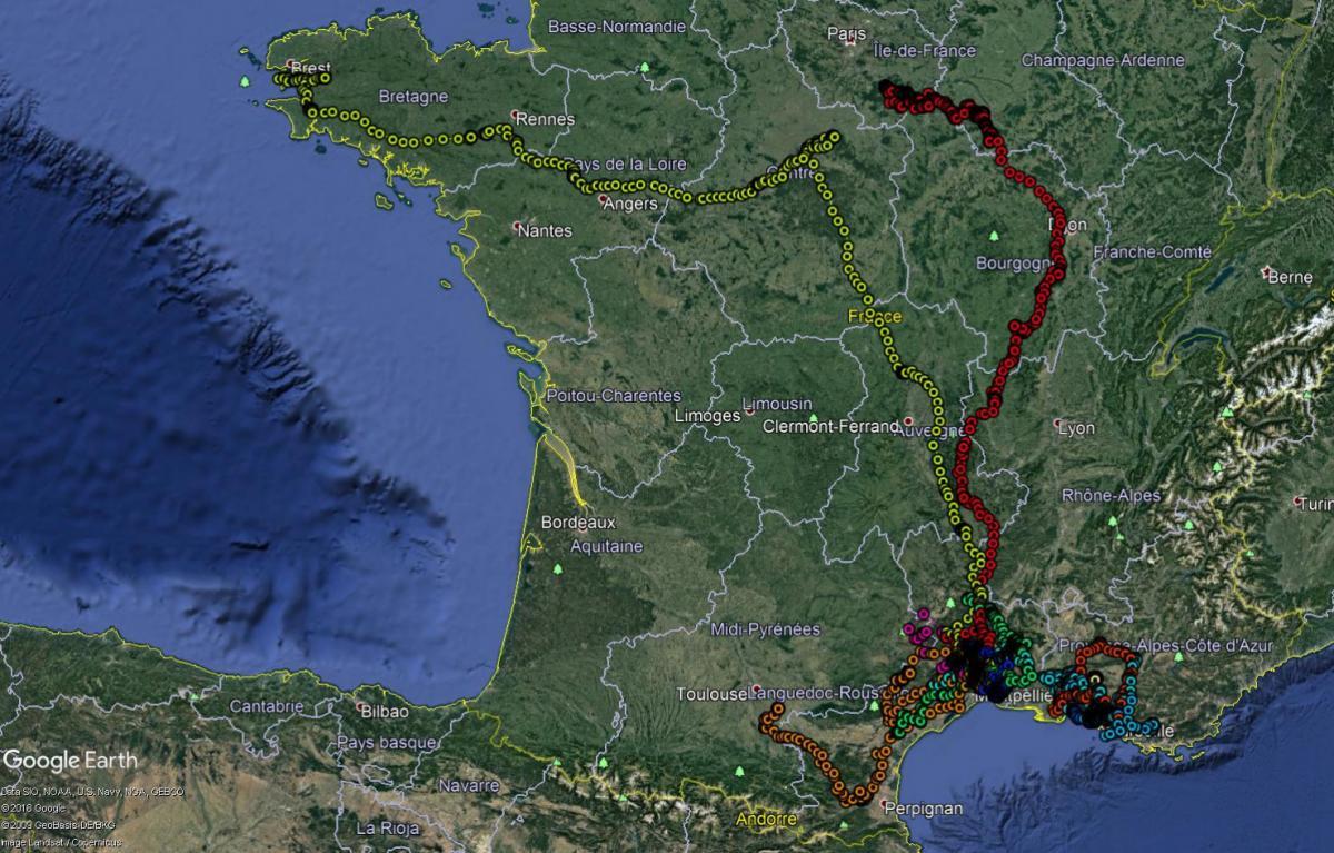 http://files.biolovision.net/observatoire-rapaces.lpo.fr/userfiles/Agenda/Juv2018-sept2018.jpg