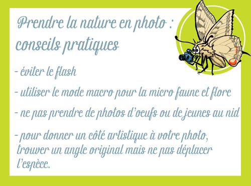 conseils pour prendre la nature en photo.png