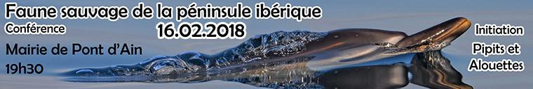 http://files.biolovision.net/www.faune-ain.org/userfiles/confpeninsuleiberique1.jpg