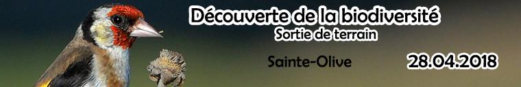 http://files.biolovision.net/www.faune-ain.org/userfiles/dcouvbiodiv.jpg