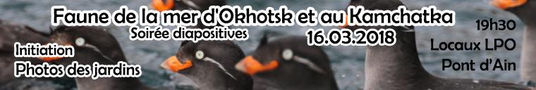 http://files.biolovision.net/www.faune-ain.org/userfiles/kamchatka_1.jpg