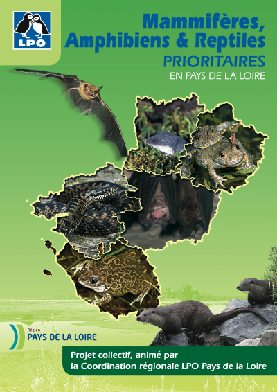 http://files.biolovision.net/www.faune-anjou.org/userfiles/publis/livresbrochures/MammAmphReptPrioritairesPDL.png