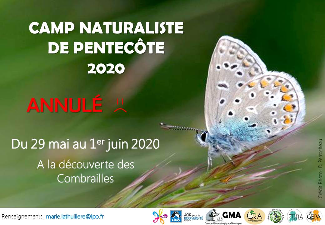 http://files.biolovision.net/www.faune-auvergne.org/userfiles/Annulation-Campdepentecte.jpg