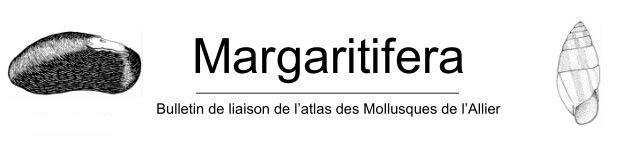 http://files.biolovision.net/www.faune-auvergne.org/userfiles/Documentations/Margaratifera/Margaratifera.JPG