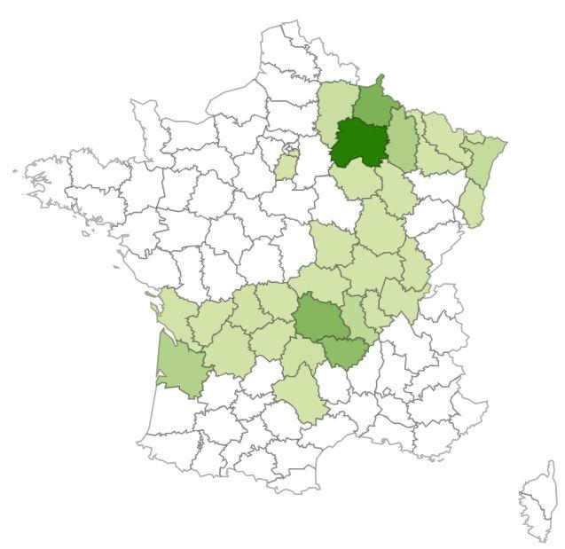 http://files.biolovision.net/www.faune-charente-maritime.org/userfiles/Mammiferes/Raton-laveur.JPG