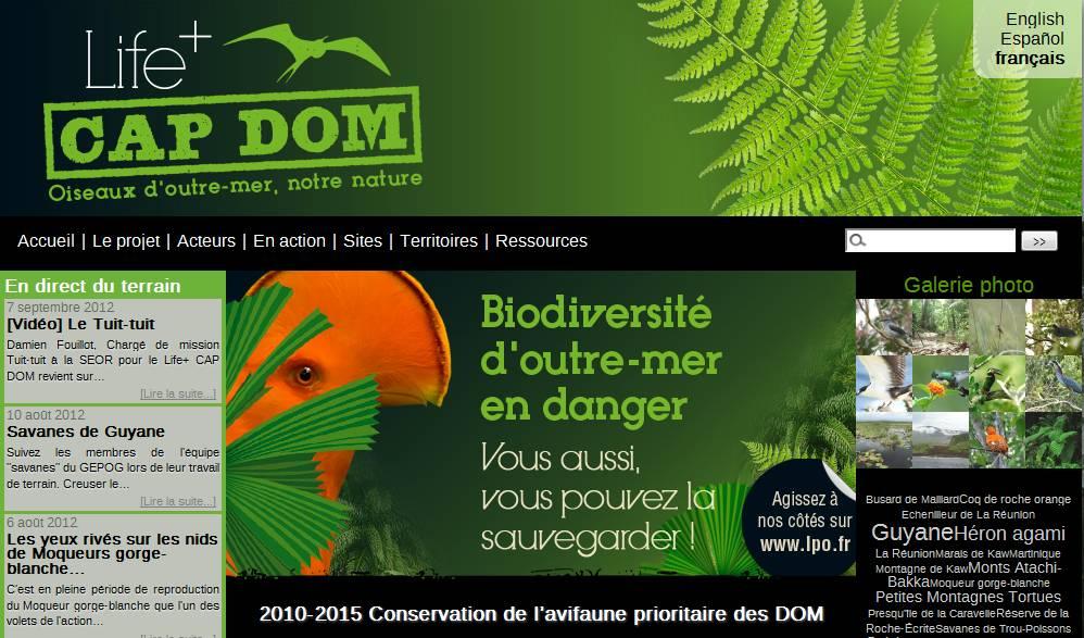 http://files.biolovision.net/www.faune-guyane.fr/userfiles/Capture01.jpg