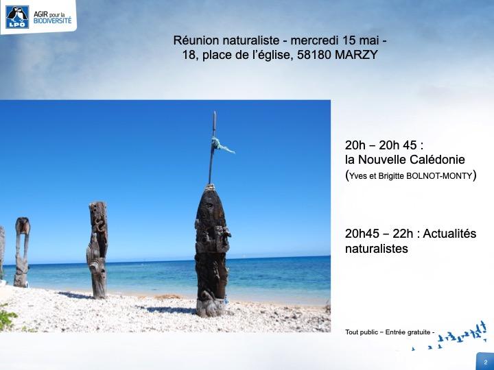 http://files.biolovision.net/www.faune-nievre.org/userfiles/Diapositive2_3.jpg