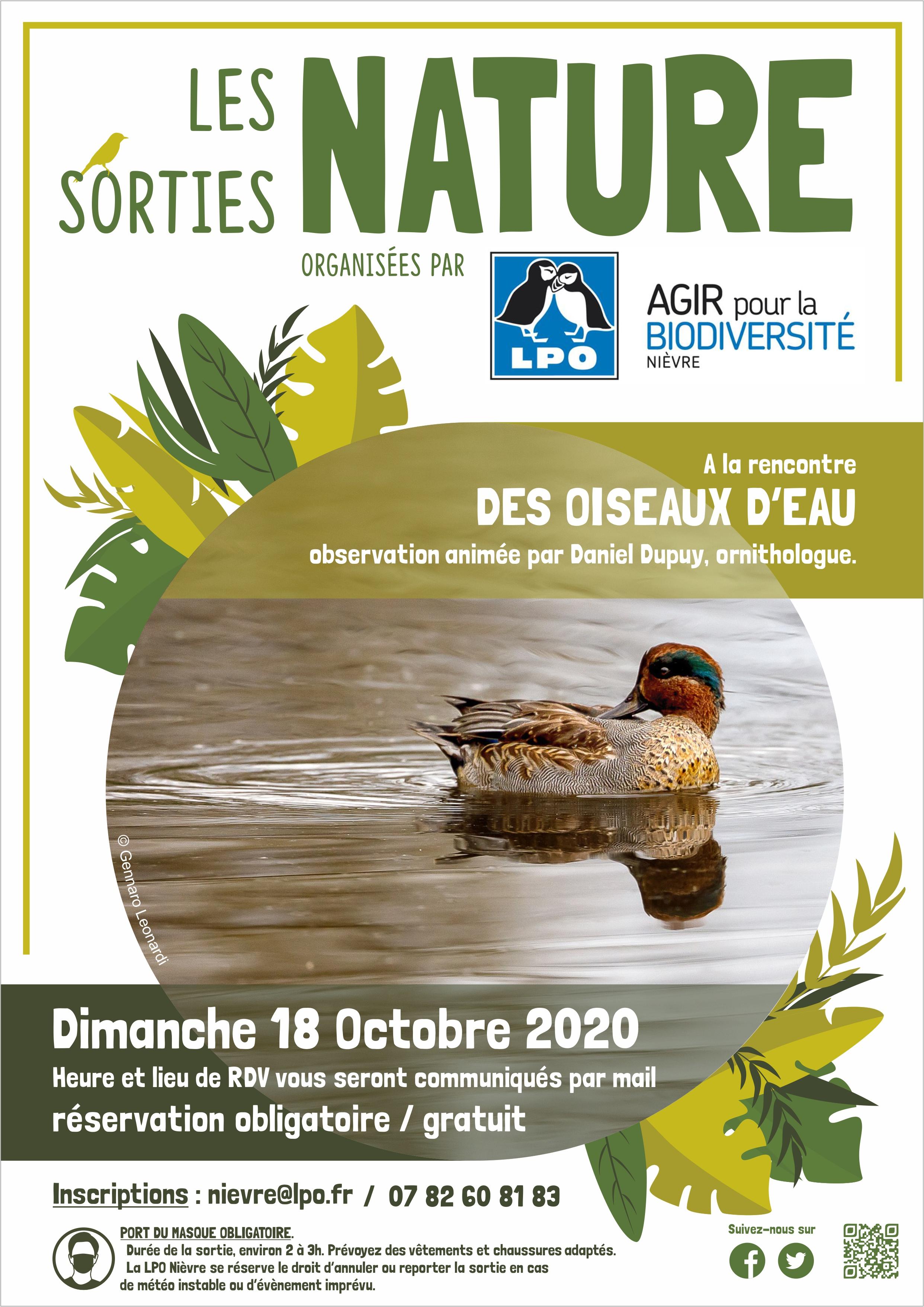 http://files.biolovision.net/www.faune-nievre.org/userfiles/sortieOiseauxdeau.jpg