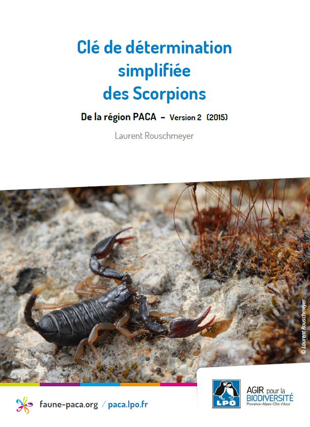 http://files.biolovision.net/www.faune-paca.org/userfiles/Scorpions/couv2.JPG