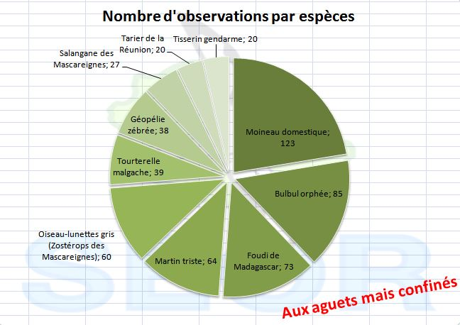 http://files.biolovision.net/www.faune-reunion.fr/userfiles/ACASA/nbobs105.JPG