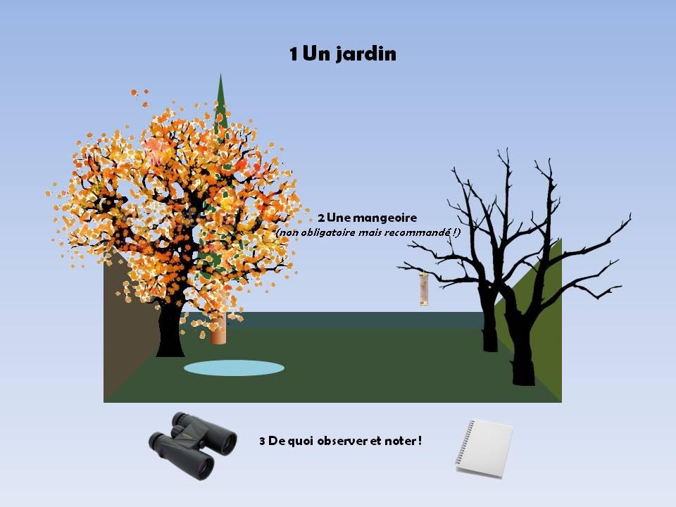 http://files.biolovision.net/www.faune-rhone.org/userfiles/OiseauxDesJardins/TutoProtocole/PresentationProtocole1.JPG