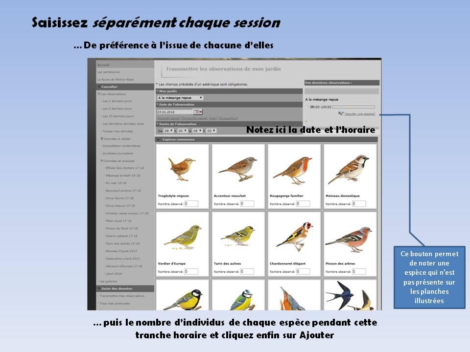 http://files.biolovision.net/www.faune-rhone.org/userfiles/OiseauxDesJardins/TutoProtocole/PresentationProtocole5.JPG