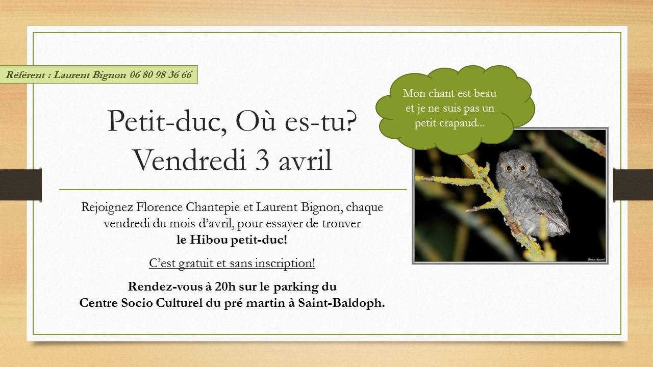 http://files.biolovision.net/www.faune-savoie.org/userfiles/Petit-ducOes-tu.jpg