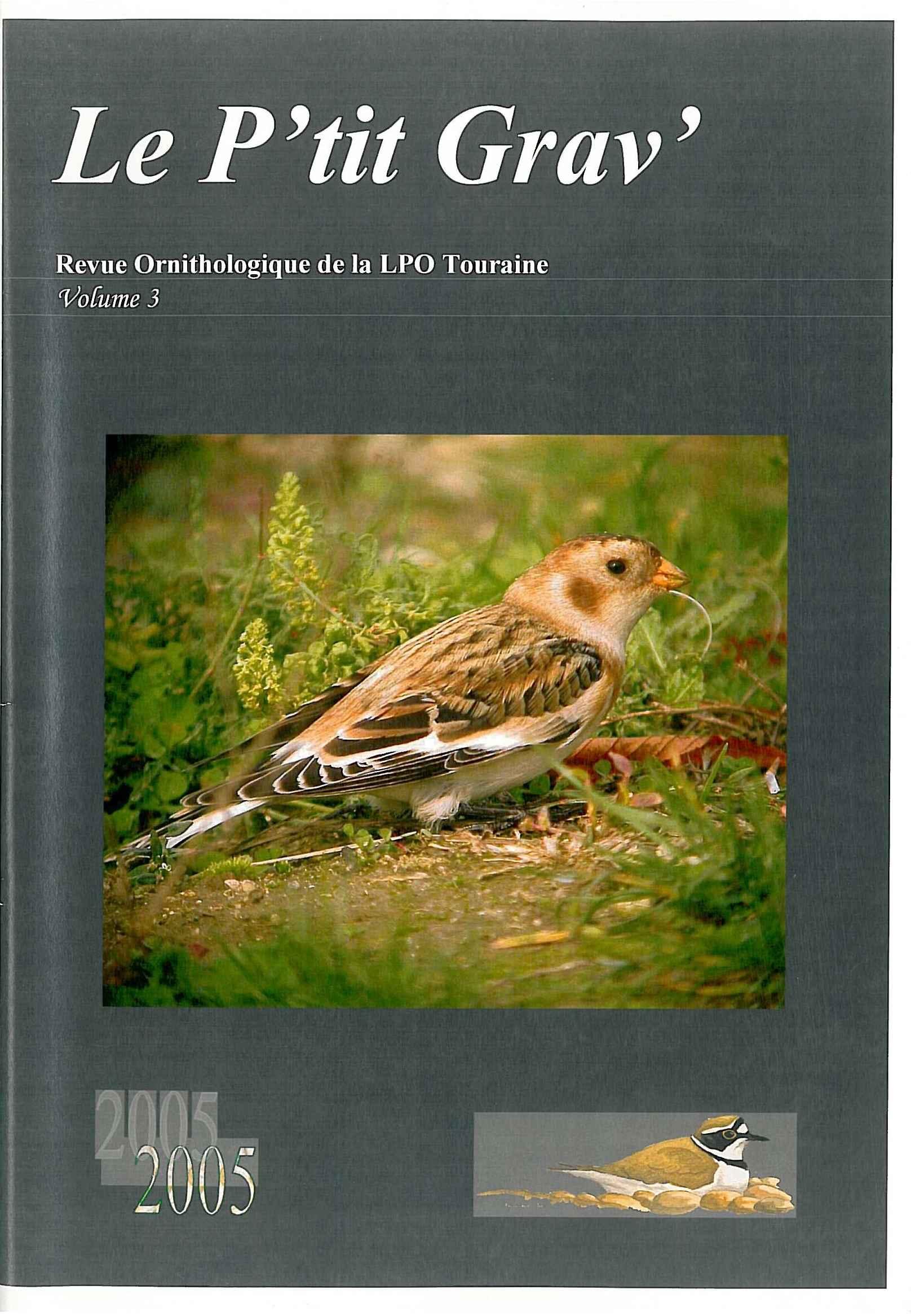 http://files.biolovision.net/www.faune-touraine.org/userfiles/MonDossier/PtitGravvol3.jpg