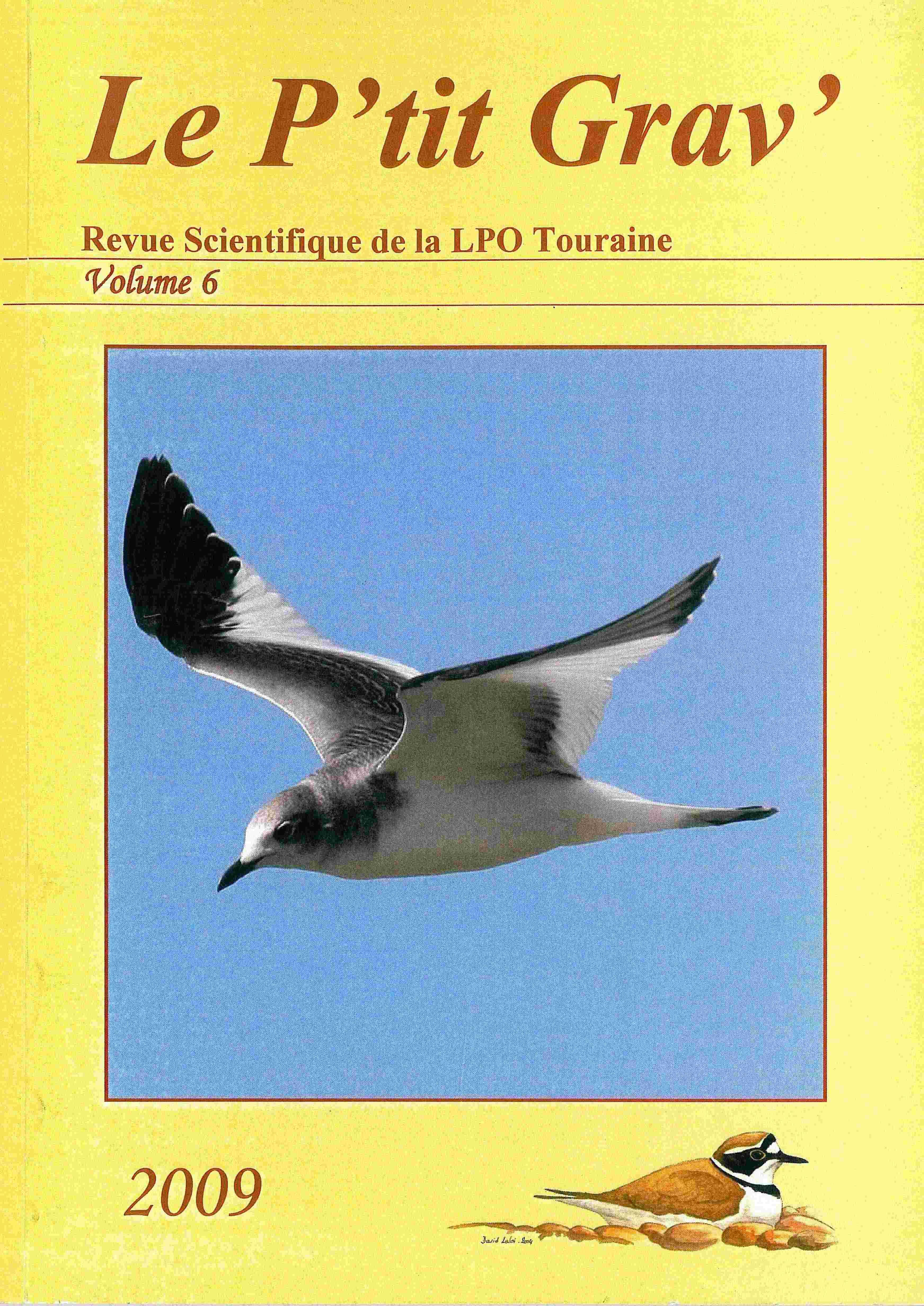 http://files.biolovision.net/www.faune-touraine.org/userfiles/MonDossier/PtitGravvol6.jpg