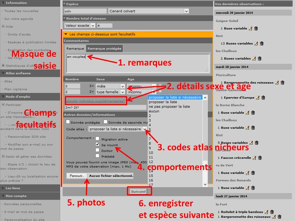 http://files.biolovision.net/www.faune-yonne.org/userfiles/TutorielpourFauneyonne/TutopourFY-12.jpg