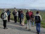 Les oiseaux du vignoble de Dardagny et du Vallon de la Roulave