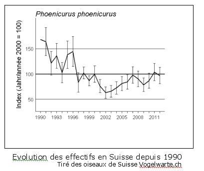 Evolution de la population du rougequeue à front blanc en Suisse