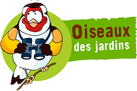 Oiseaux des Jardins