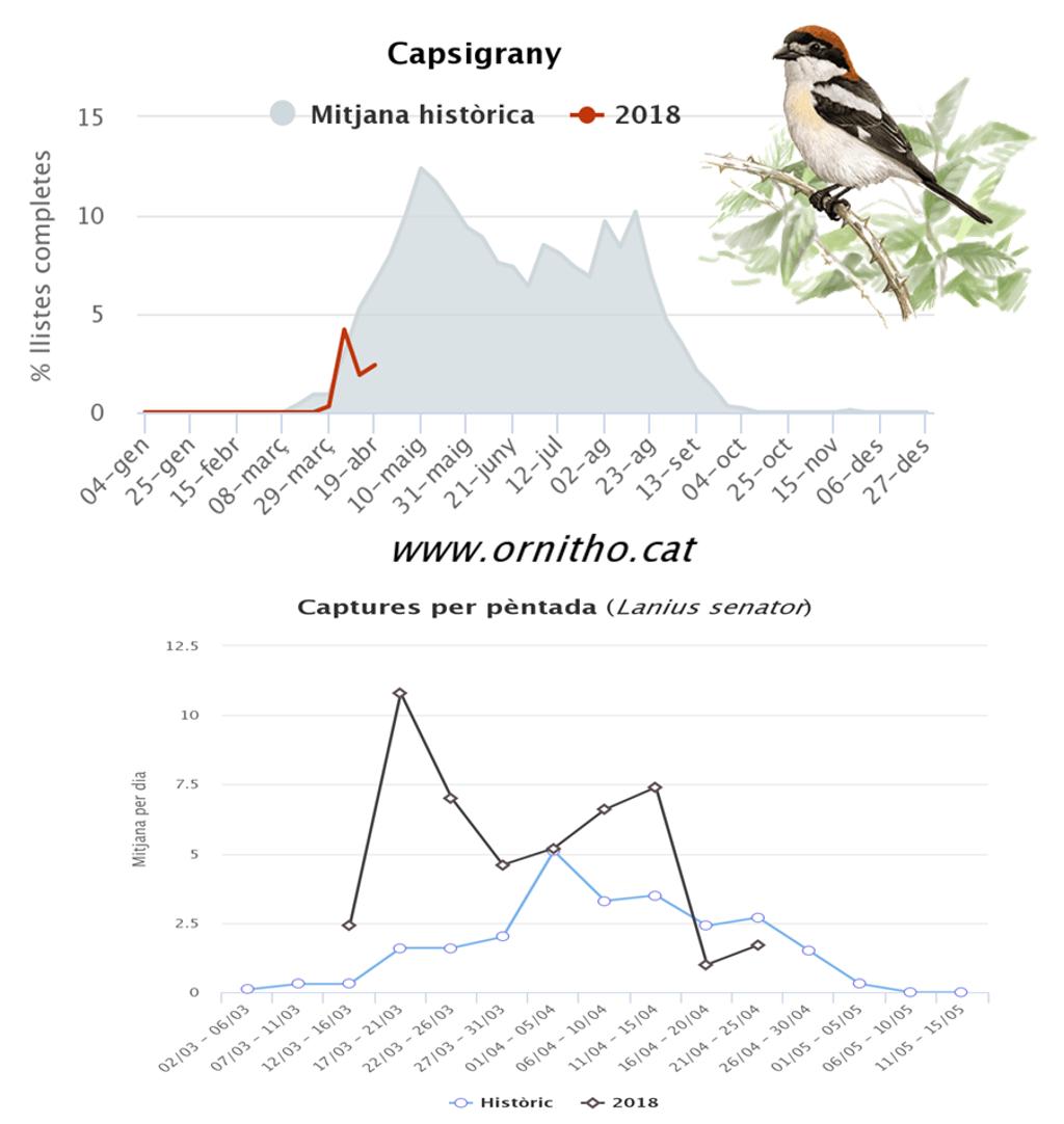 http://files.biolovision.net/www.ornitho.cat/userfiles/lansenyas2.png