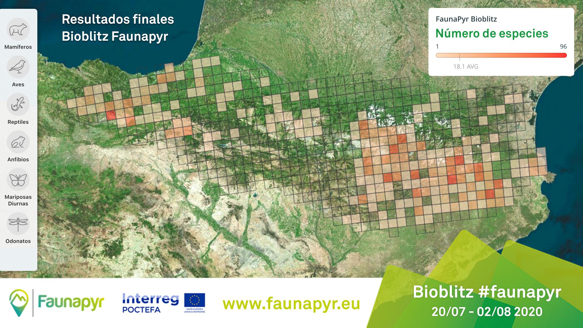 http://files.biolovision.net/www.ornitho.eus/userfiles/ESP-Mapa-especies-Resultados-Bioblitz.jpg