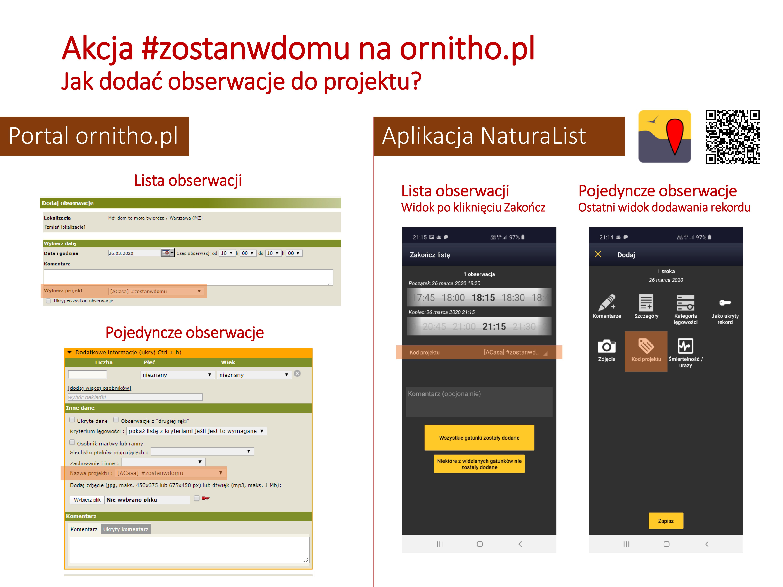 http://files.biolovision.net/www.ornitho.pl/userfiles/aktualnosci/ornithozostanwdomu.png